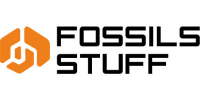 Fossils-Stuff-FPV-Drone-Major-Consultancy-Services-Solutions-Hub