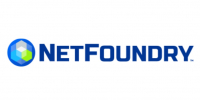 Net Foundry- Drone Major Group