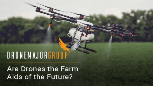 Drone spraying crops in agriculture industry